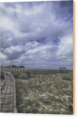 New Smyrna Beach Dunes Wood Print by Rob Wilson
