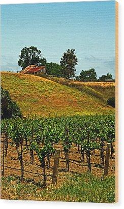 New Vineyard Wood Print by Gary Brandes