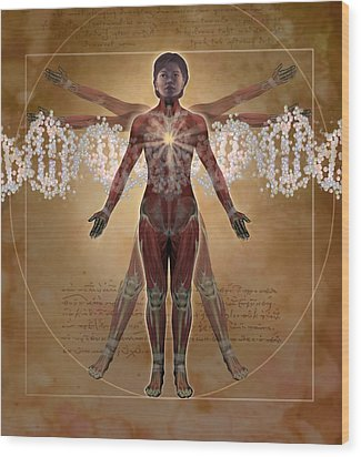 New Vitruvian Woman Wood Print by Jim Dowdalls and Photo Researchers