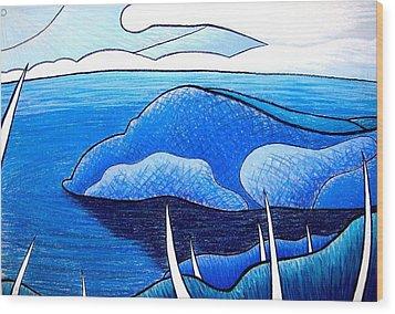 New Zealand Bay Wood Print by Jason Charles Allen