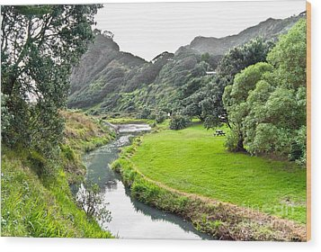 Wood Print featuring the photograph New Zealand Scenery by Yurix Sardinelly
