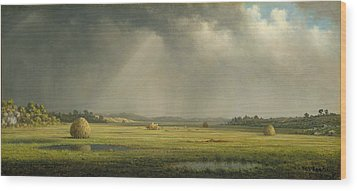 Newburyport Meadows Wood Print by Martin Heade
