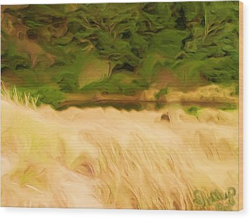 Wood Print featuring the painting Newport Oregon Tidal Pool by Shelley Bain
