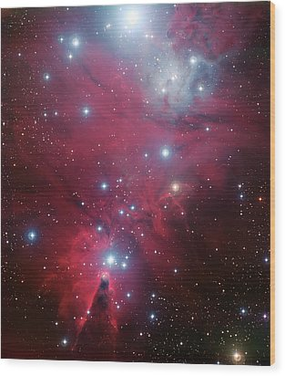 Wood Print featuring the photograph Ngc 2264 And The Christmas Tree Star Cluster by Eso