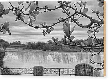 Niagara American Falls Spring Wood Print by Charline Xia