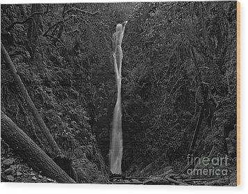 Niagara Falls, British Columbia Wood Print by Cendrine Marrouat