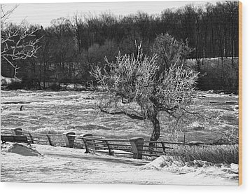 Wood Print featuring the photograph Niagara Falls Ice 4514 by Guy Whiteley