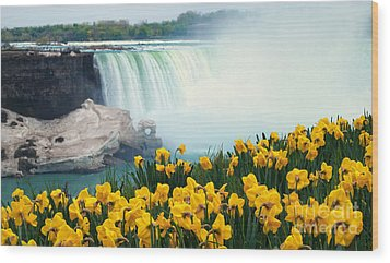 Niagara Falls Spring Flowers And Melting Ice Wood Print by Charline Xia