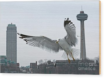 Wood Print featuring the photograph Niagara Falls With Gulls by Charline Xia