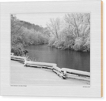 Nichols Arboretum #5 Wood Print by Phil Perkins