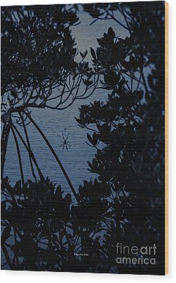 Wood Print featuring the photograph Night Banana Spider by Megan Dirsa-DuBois