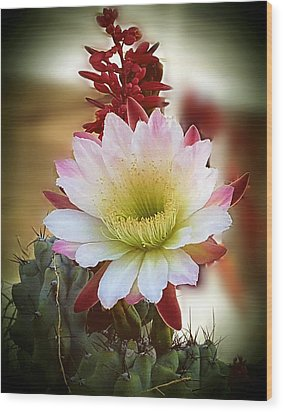 Wood Print featuring the photograph Night-blooming Cereus 2 by Marilyn Smith