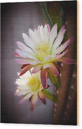 Wood Print featuring the photograph Night Blooming Cereus by Marilyn Smith