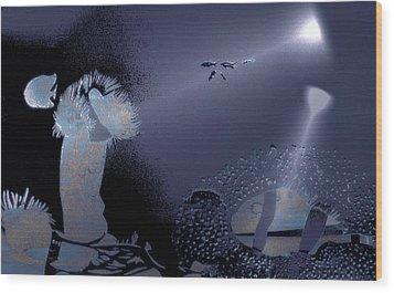Night Dive Wood Print by Mushtaq Bhat