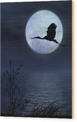 Night Flight Wood Print by Christina Lihani