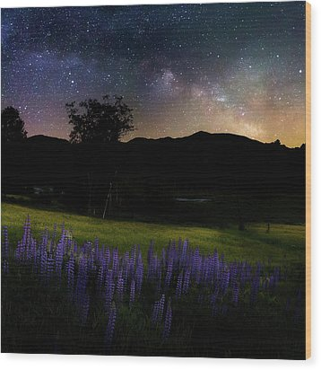 Wood Print featuring the photograph Night Flowers Square by Bill Wakeley