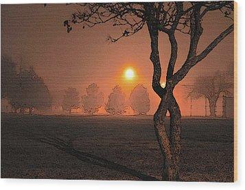 Night Fog Wood Print by Betty LaRue