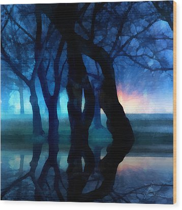 Night Fog In A City Park Wood Print by Francesa Miller