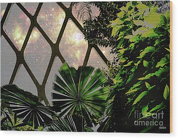 Night In The Arboretum Wood Print