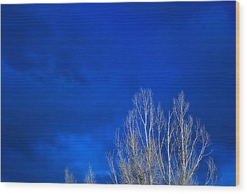 Night Sky Wood Print by Steve Gadomski