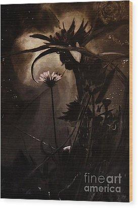 Nightflower Wood Print by Vanessa Palomino