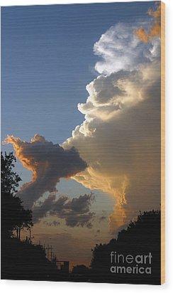 Nightly Storm Wood Print by Steve Augustin