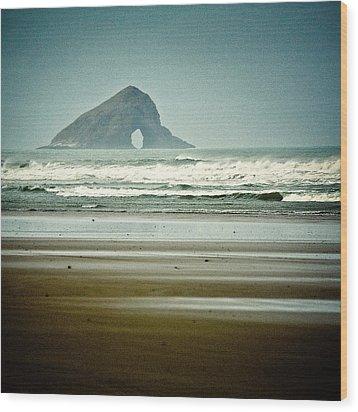 Ninety Mile Beach Wood Print by Dave Bowman
