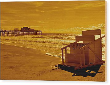 No Lifeguard Wood Print by Joe  Burns