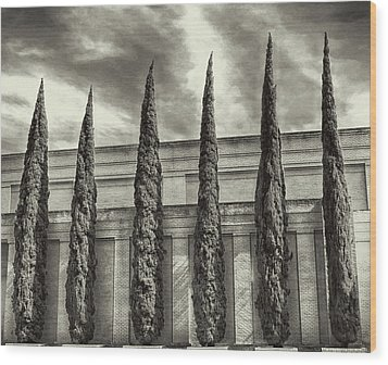 Wood Print featuring the photograph No Ordinary Days - Bw by Wendy J St Christopher