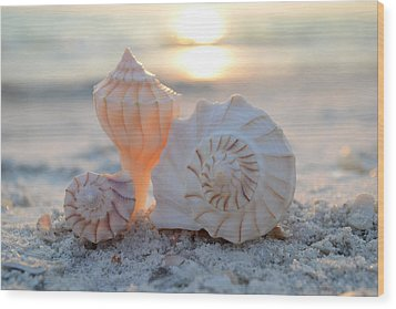 Wood Print featuring the photograph No Place Like Home by Melanie Moraga