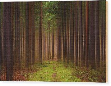 No Way Out Wood Print by Svetlana Sewell