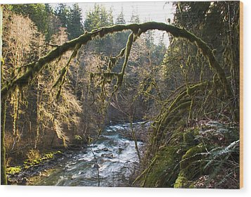 Wood Print featuring the photograph Nooksack River by Yulia Kazansky