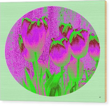 Noric House Tulips Wood Print by Will Borden