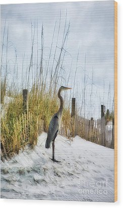 Wood Print featuring the photograph Norriego Point Heron by Mel Steinhauer