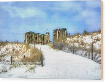 Wood Print featuring the photograph Norriego Point Sand Dunes by Mel Steinhauer