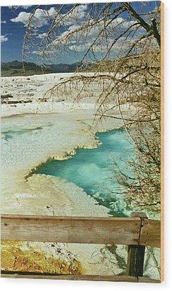 Norris Hot Spring Wood Print