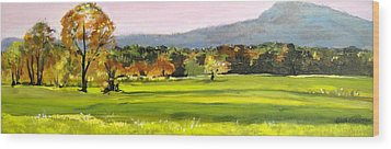North Amherst View Wood Print