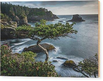 North By Northwest Wood Print