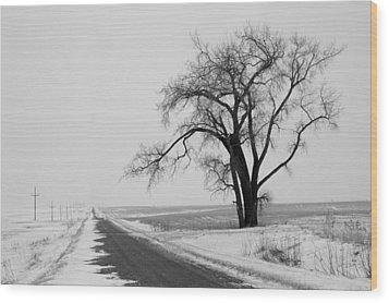 North Dakota Scenic Highway Wood Print by Bob Mintie
