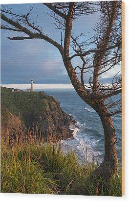 North Head Lighthouse 2 Wood Print by Greg Vaughn