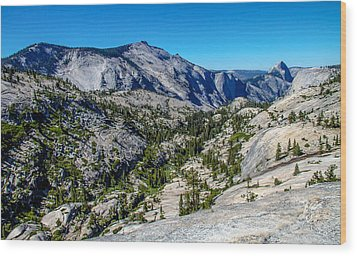 North Side Of Half Dome Valley Wood Print by Brian Williamson