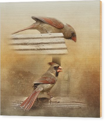 Northern Cardinals At Sunrise Wood Print by TnBackroadsPhotos