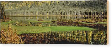 Northern Lake Wood Print by Mark Duffy