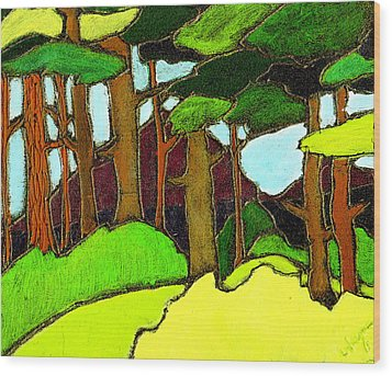 Northern Pathway Wood Print