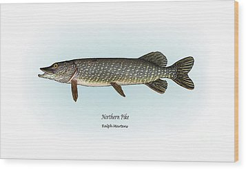 Northern Pike Wood Print by Ralph Martens