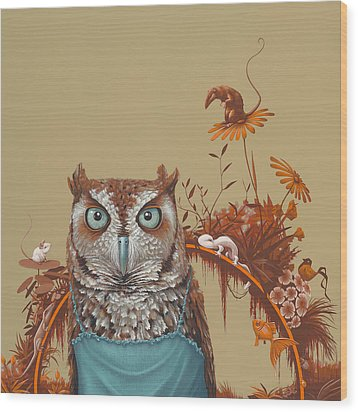 Northern Screech Owl Wood Print by Jasper Oostland
