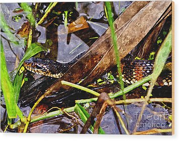 Wood Print featuring the mixed media Northern Water Snake by Olga Hamilton