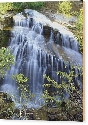 Northfork Falls Wood Print by Marty Koch