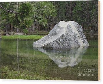 Not An Iceberg Wood Print by Debby Pueschel