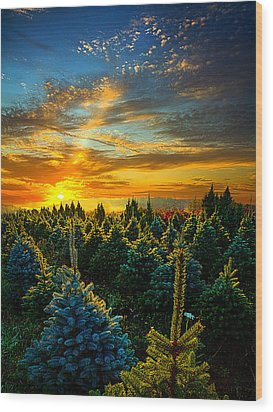 Not Forgotten Wood Print by Phil Koch